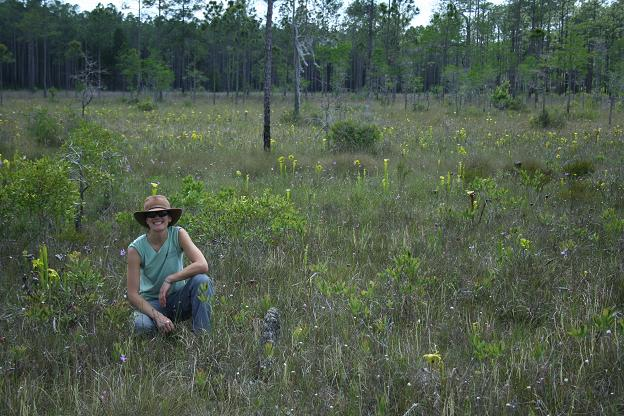Happiness is a Florida bog